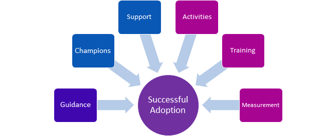 encourage areas of approach for successful Microsoft adoption